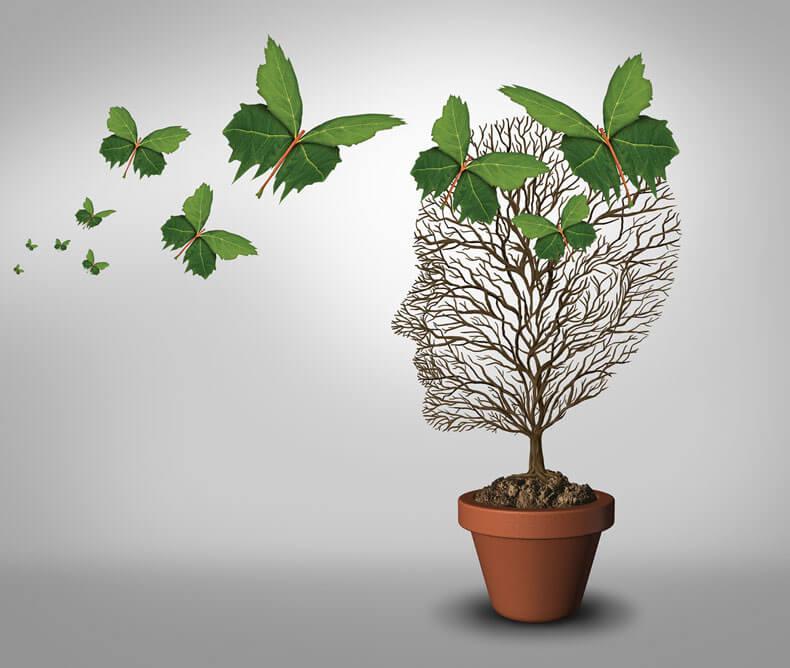Terapia Immaginativa ITP, psicologia mente libera